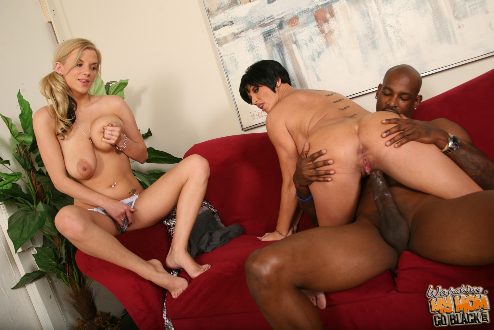 image Busty relatives shay foxx and haley cummings share a bbc